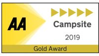 AA Gold Award